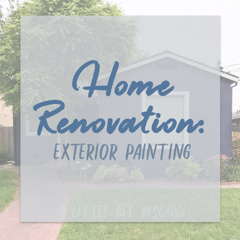 Rental Home Reno. : Painting the House