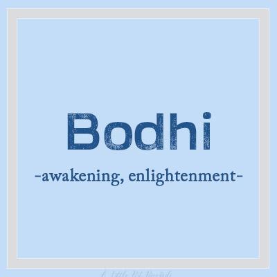 UniqueBName-Bodhi